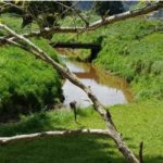 , An essay of degraded rivers that need to be fixed up