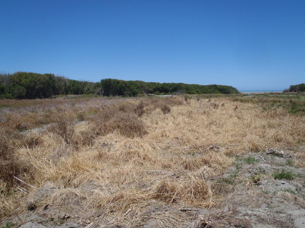 , The Rakaia River – Canterbury's troubled water
