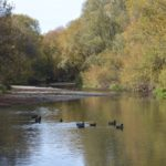 Selwyn River