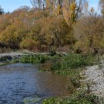 , Selwyn Water Pollution continued