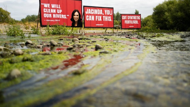 , Toxic River Algae Early Summer a Shameful Situation
