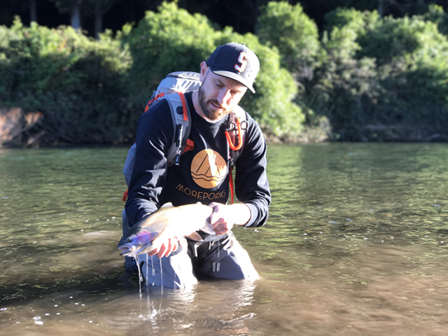 Fresh Trout From Taupo