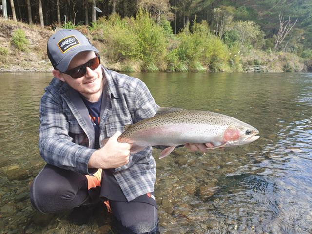Fresh Run Rainbow Trout Taupo