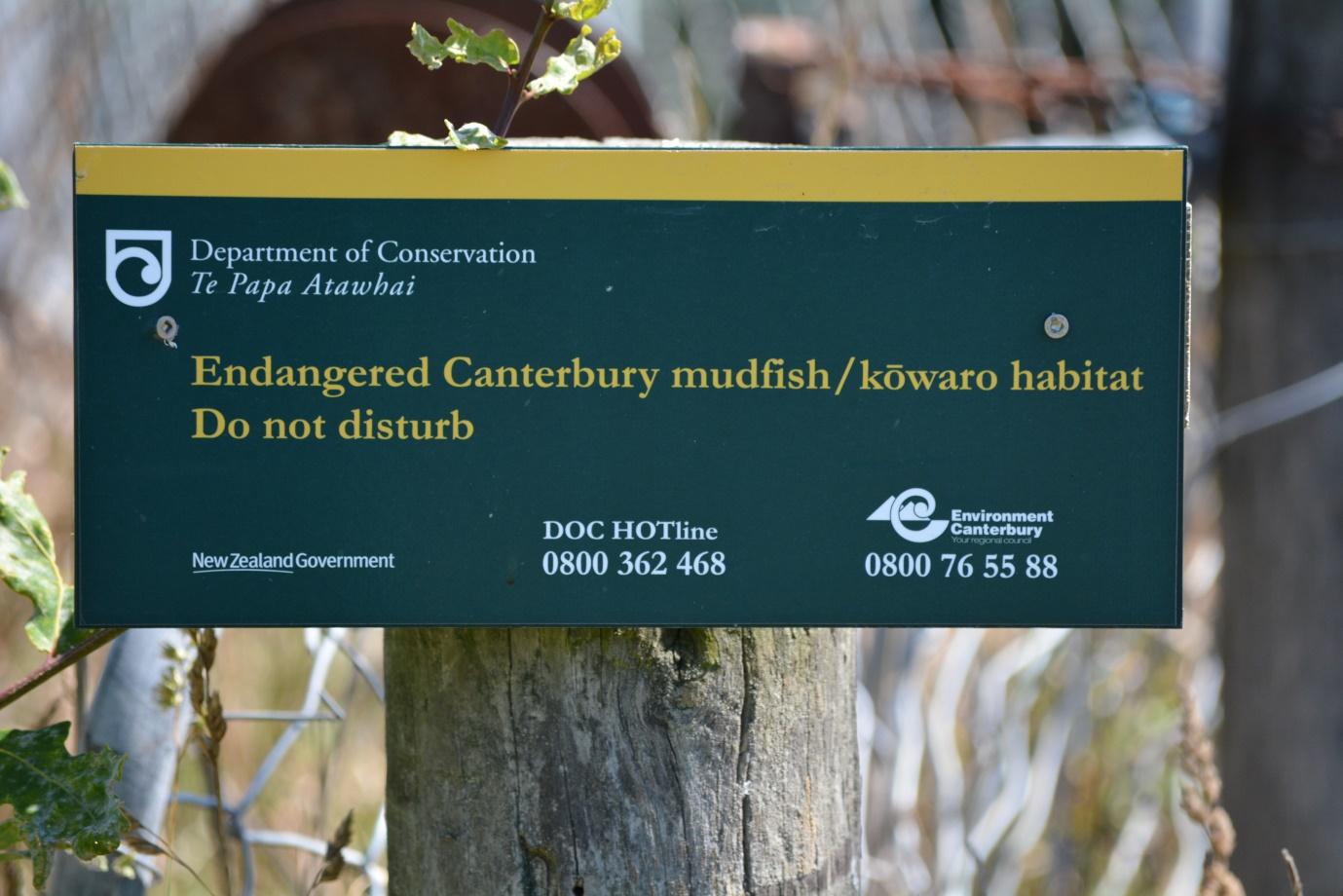 DOC Mudfish Warning