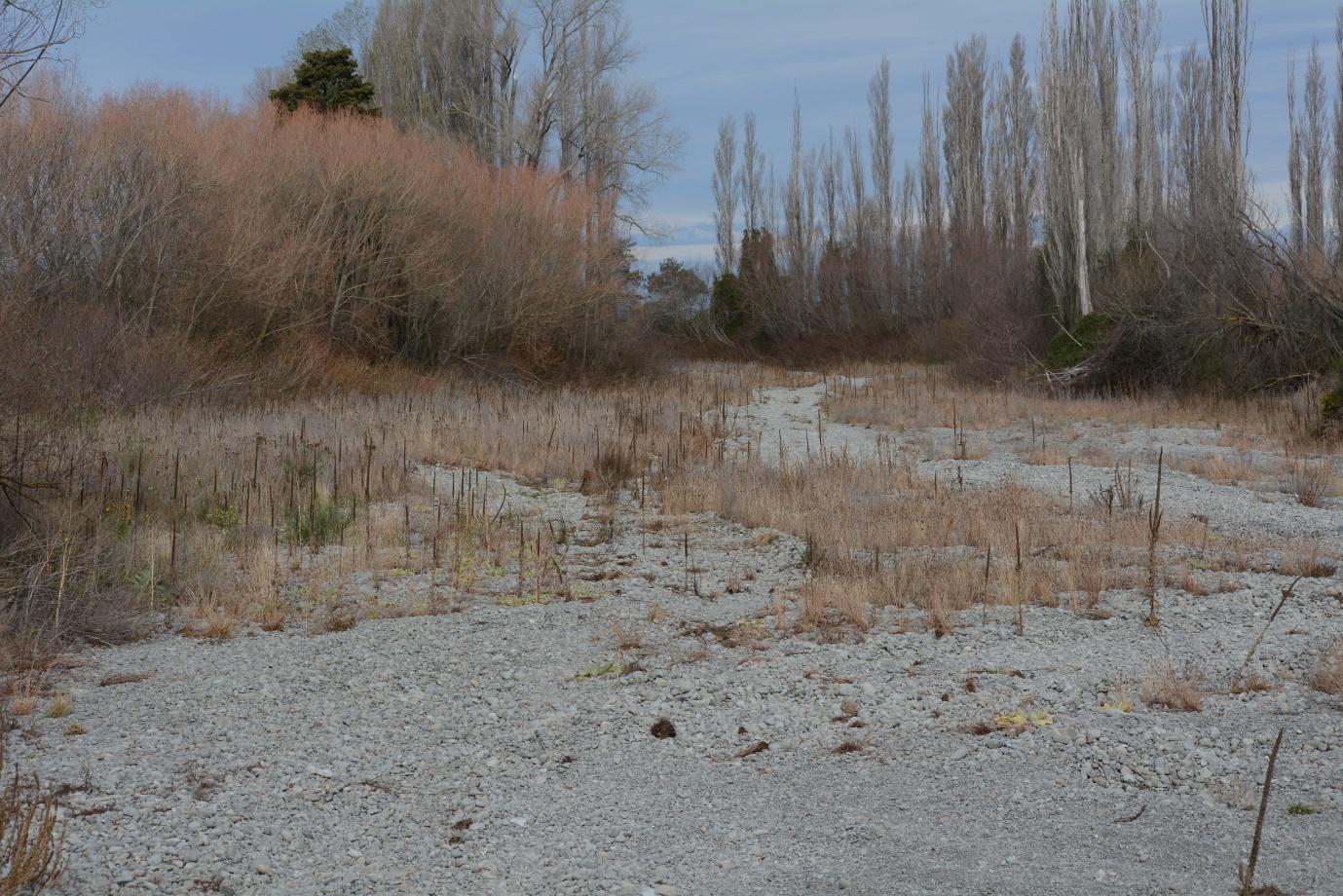 Hinds River 25 April 2021